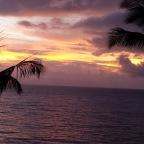 Tiki in Maui? Not so Wowie…